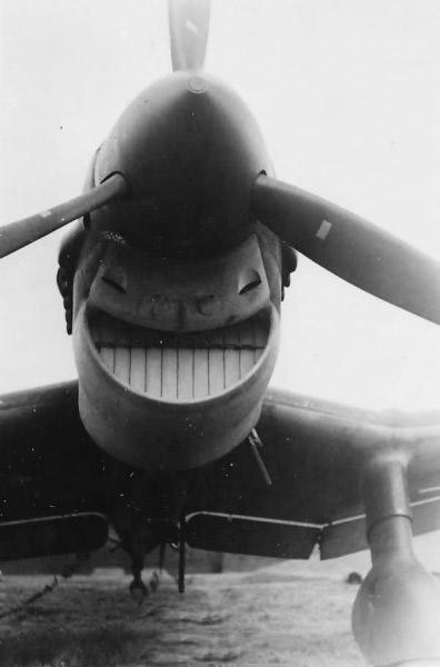 飞机也会做搞笑表情