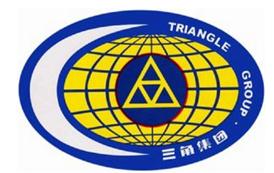 三角子公司技改项目通过验收